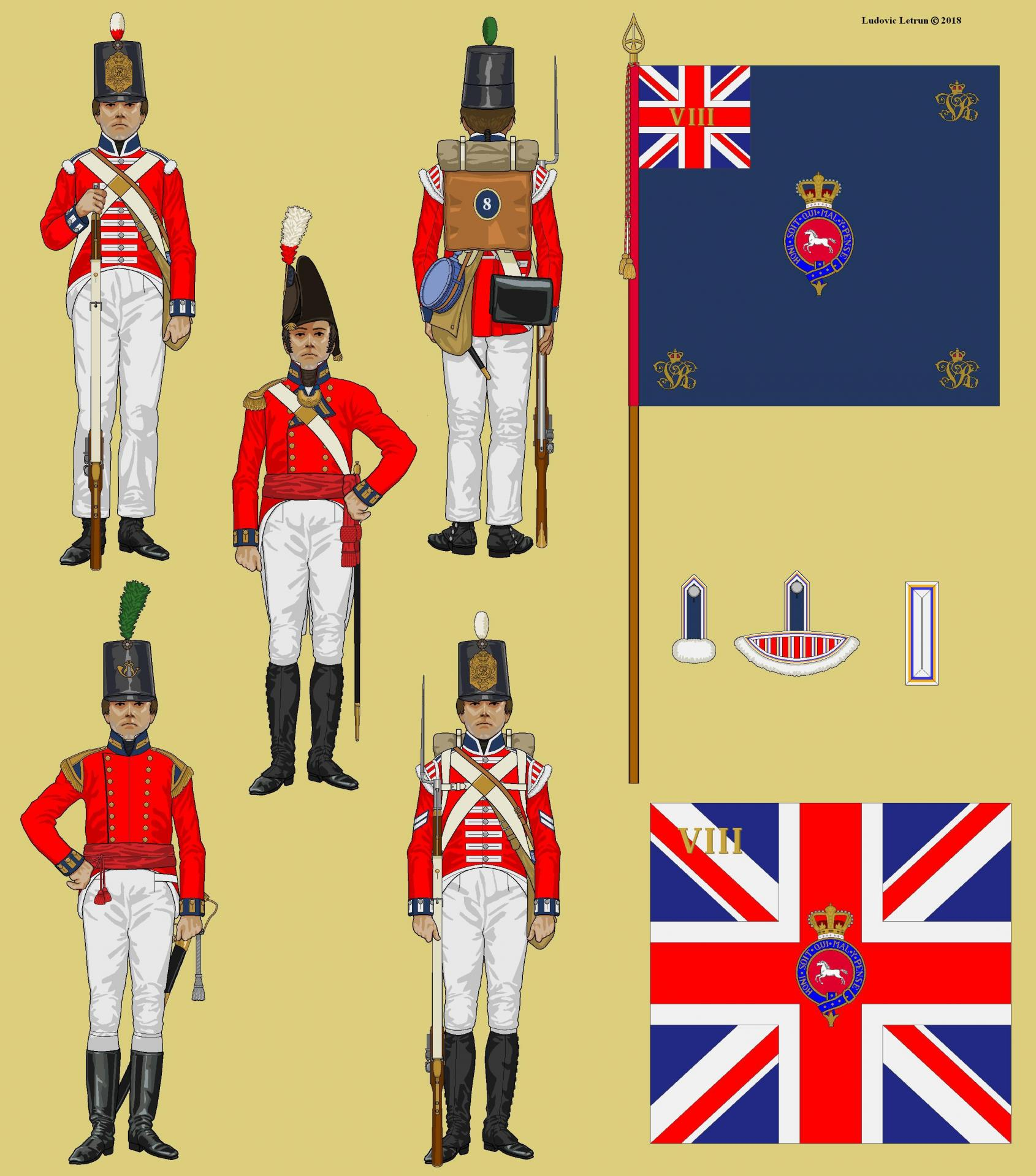 Campagne d egypte 8th regiment of foot